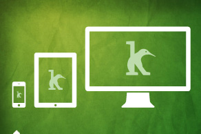 Serveis de programació web i mòbil App